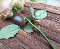 Fibula dell'agata con un fiore della rosa Fotografia Stock Libera da Diritti