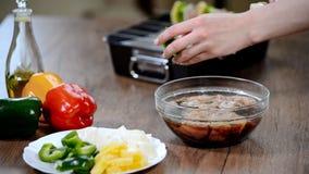 Ficelant le barbecue a grillé le poulet sur des brochettes pour un repas de fête banque de vidéos