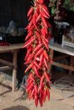 Ficelle des poivrons de piment image stock