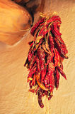 Ficelle des poivrons de piment rouge Photographie stock