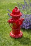 Fiche d'incendie rouge Image stock