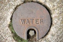 Fiche de l'eau Image stock