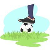 Fichero del fútbol + del vector Imagen de archivo libre de regalías