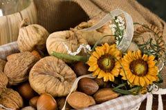 Fichi Nuts e secchi Immagini Stock Libere da Diritti