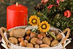 Fichi Nuts e secchi (a natale) Immagine Stock Libera da Diritti