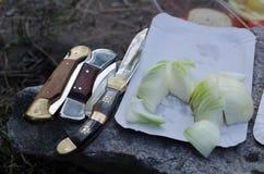 Fick- knivar med löken arkivfoton