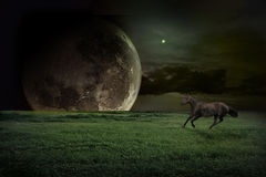 Fiction landscape. With running horse Stock Photos