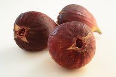 Ficus Carica果子 库存照片
