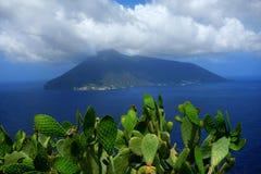 Ficus d'opuntia, îles éoliennes, Italie Photographie stock