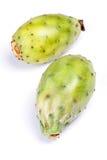 Ficus d'opuntia indica images stock