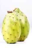 Ficus d'opuntia indica photographie stock libre de droits