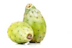 Ficus de la Opuntia Indica Imagenes de archivo