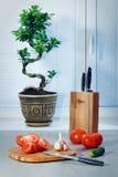Ficus ein Bonsai nahe einem Fenster über Vorhänge, Tomaten, Knoblauch, eine Gurke, Messer und ein hackendes Brett Lizenzfreie Stockfotografie