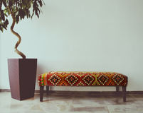 Ficus Tree In Living Room Next To A Sofa Stock Photos