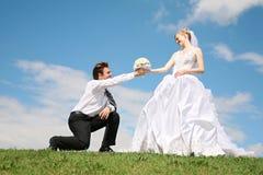 Fidanzato e sposa fotografia stock