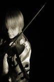 Fiddle Imagem de Stock Royalty Free
