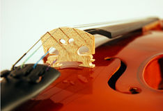 Fiddle close-up. New fiddle/violin close-up Royalty Free Stock Photography