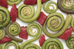 Fiddlehead Ferns and Red Pepper Pieces. Layed out on a white ceramic plate Stock Photography
