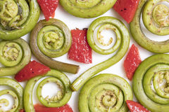 Fiddlehead Ferns and Red Pepper Pieces. Layed out on a white ceramic plate Stock Photos