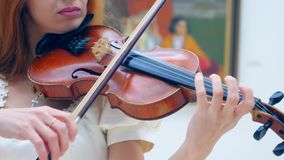 A fiddler performs in a museum hall with pictures on walls. 4K stock video footage