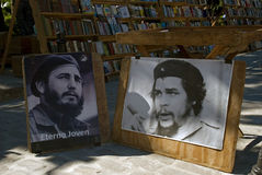 Fidel und Che, Havana, Kuba stockbild
