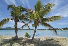 Fidschi-Insel, stockfoto