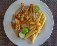 Fied Calamari with fries Royalty Free Stock Image