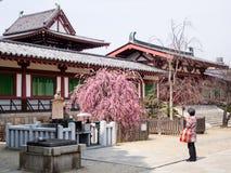 Fiel en el templo budista de Shitennoji en Osaka, Japón Fotografía de archivo libre de regalías