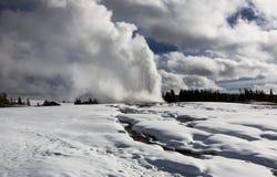 Fiel velho, inverno, Yellowstone fotos de stock