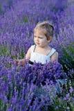 field лаванда девушки Стоковое Фото