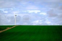 field ветер турбины Стоковые Фотографии RF