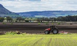 field вспахивать трактор Стоковое Изображение RF