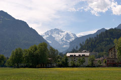 field гора Стоковое фото RF