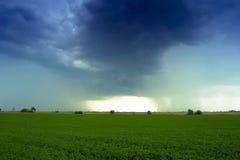 field гром Стоковое Изображение