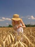 field девушка Стоковое Изображение RF