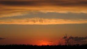 field заход солнца Стоковые Изображения RF