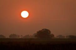 field над восходом солнца Стоковые Изображения RF