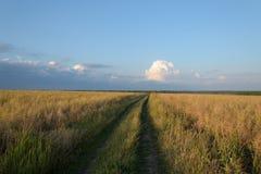Field дорога Стоковые Фото