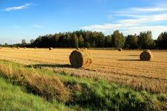 Field с стогами сена после сбора в деревне Стоковые Фотографии RF