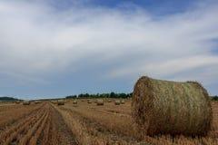 Field с сторновкой Стоковое Изображение