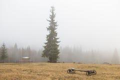 Field тележка сена в тумане гор утра стоковое изображение rf