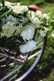 Field цветки на хоботе идя велосипеда Стоковая Фотография