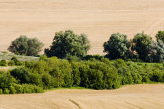 Field. Southern Moravia, Czech Republic Royalty Free Stock Photo
