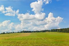 Field. Landscape with beautiful clouds over a field royalty free stock images