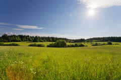 Field Royalty Free Stock Images
