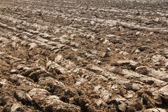Field 2. Agriculture theme: view of plough land in brown colors Royalty Free Stock Photos