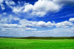 The field. The green spring field. The Republic Moldova Royalty Free Stock Image