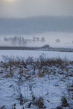 Field. In winter with forest in fog and clouds stock photography