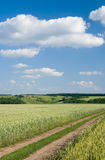Field. Rural landscape with field, road and clouds Royalty Free Stock Photography