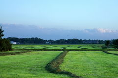 Field. Freshly mowed field on mid summer evening. Blue and green Royalty Free Stock Image